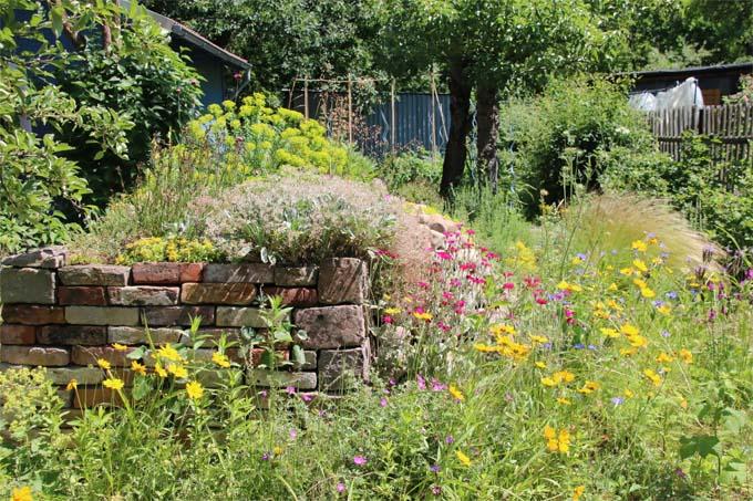 Projekt Blühende Gärten Damit Es Summt Und Brummt Nabu Bw