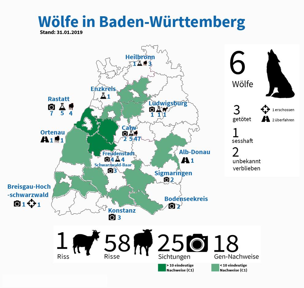 Wölfe In Baden-Württemberg