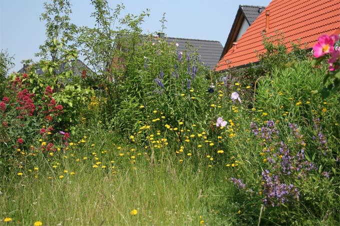 Naturnahes g rtnern leicht gemacht nabu bw - Gartengestaltung leicht gemacht ...