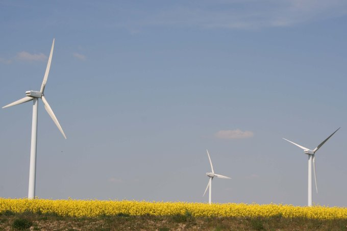 Artenschutzrechtliche Gutachten sind der Schlüssel für die Bewertung, ob der Bau einer Windenergieanlage am geplanten Standort mit dem Natur- und Artenschutz in Einklang gebracht werden kann oder nicht. - Foto: NABU/Norman Schiwora