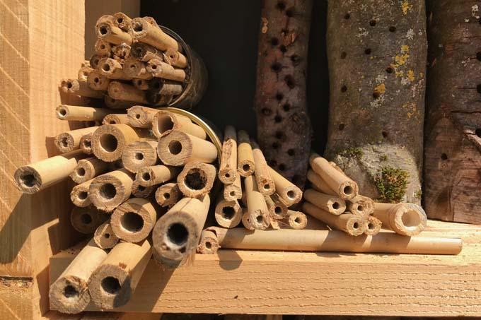 Nisthilfe für Wildbienen - Foto: NABU/Lara Mignat